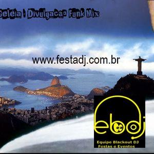dj-festa-funk-geleia-2012-rio