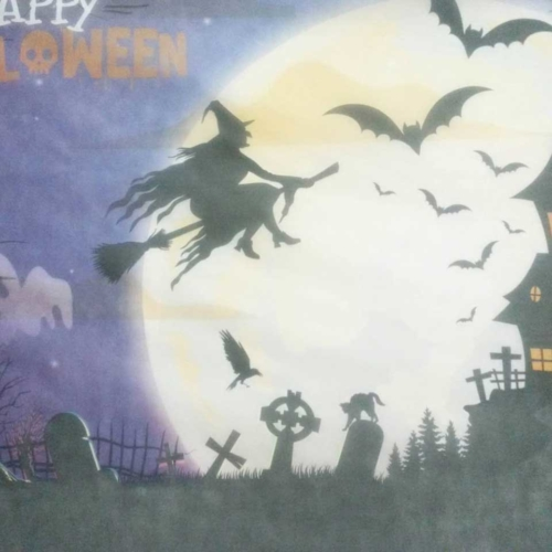 9-festa-dj-sp-halloween-191026